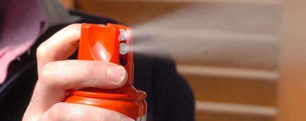 Ordinanza antizanzare  A Cucciago si rischia l'arresto