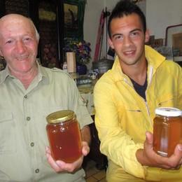 Passione da nonno a nipote  «Farò l'apicoltore»