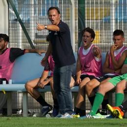 Gallo già pensa al Livorno C'è abbondanza in attacco