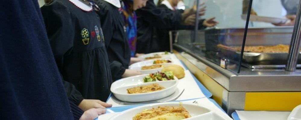 scuola s al pranzo portato da casa i giudici promuovono On pranzo a scuola portato da casa idee