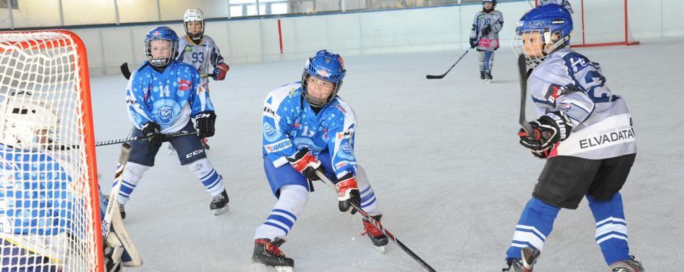 Hockey Como, sollievo Casate riaprirà domani