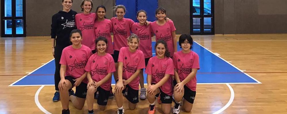 Crisi minibasket femminile  Solo tre squadre in provincia