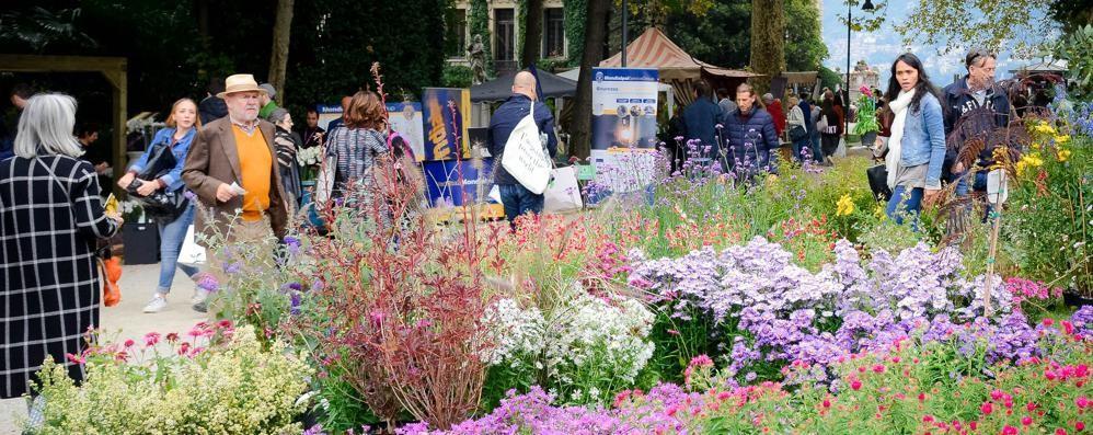 Luna, fiori e una pioggia di premi  Folla a Orticolario per il gran finale