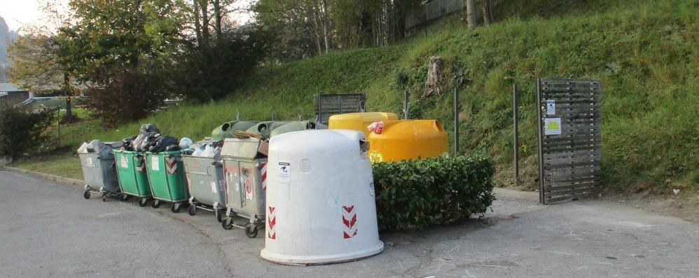 San Fedele, rifiuti abbandonati?  Maxi multe con le foto-trappola
