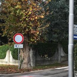 Olgiate, il divieto non basta  «Sbarrare la strada ai furbi»