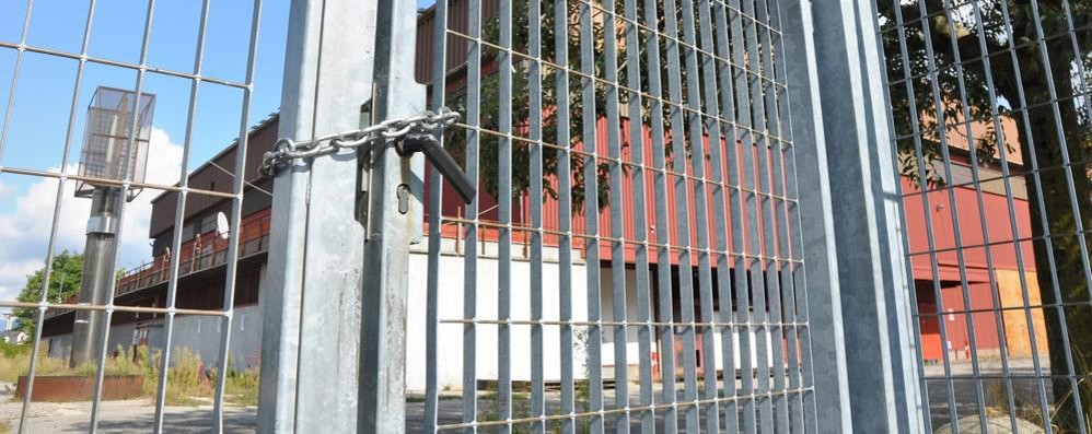 Il palasport Pianella ha venti padri   «Meritano la benemerenza civica»