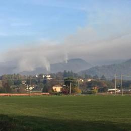 L'incendio tra Albavilla e Tavernerio  Probabile l'azione dei piromani