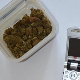 Minorenne con droga in casa Arrestato a Binago
