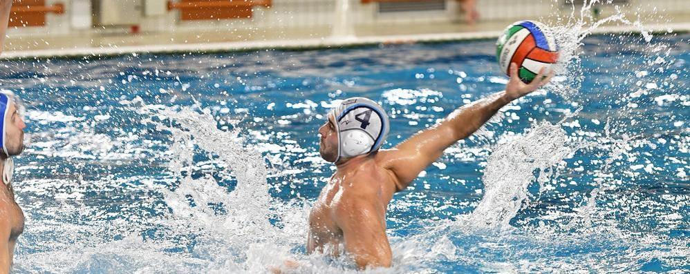 La Como Nuoto in Crocera  Per conquistare Genova