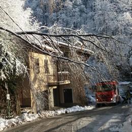 Val Cavargna, disagi per ghiaccio e neve  Energia elettrica e telefoni a singhiozzo