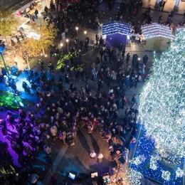 Accese le 20mila luci  del grande abete  Ora è davvero Natale