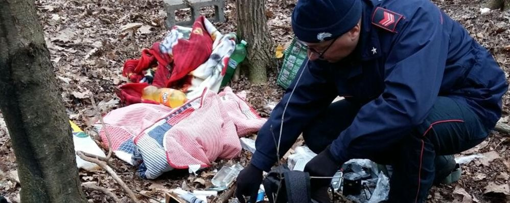 Spacciava droga nei boschi  Preso dai carabinieri a Bregnano