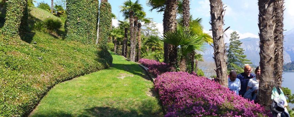 I tesori del Fai, un successo  nel Comasco 9mila visitatori