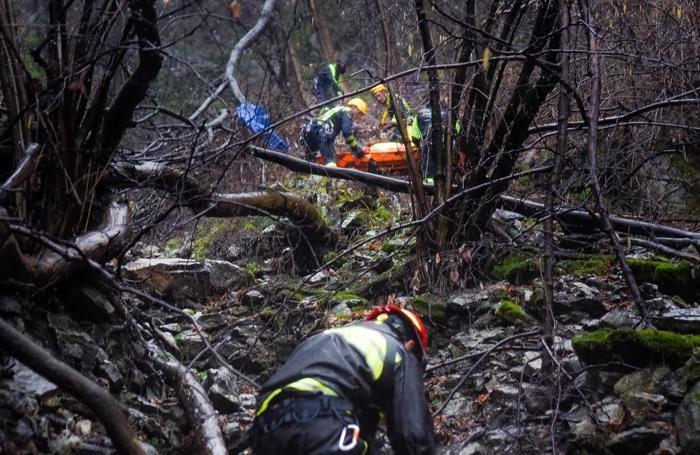 Brunate i Vigili del Fuoco slavano un cane lupo caduto per 60 metri in un dirupo