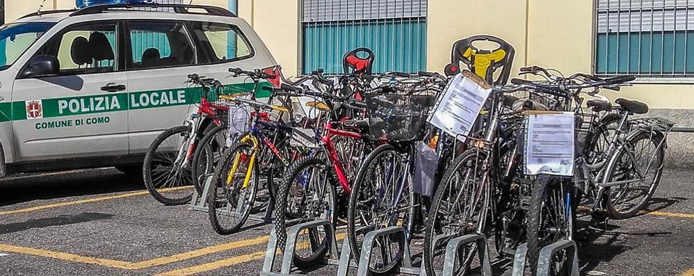 Borgo Vico, via Milano, giardini a lago I vigili recuperano venti biciclette rubate