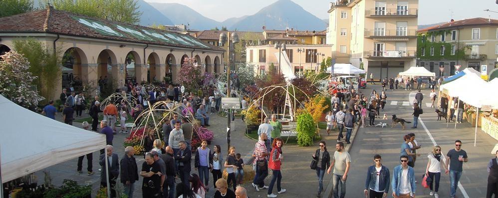 Erba, candidati tutti d'accordo  «Via le auto da piazza Mercato»