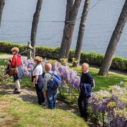 Pasqua e Pasquetta  tra Musei e tesori botanici