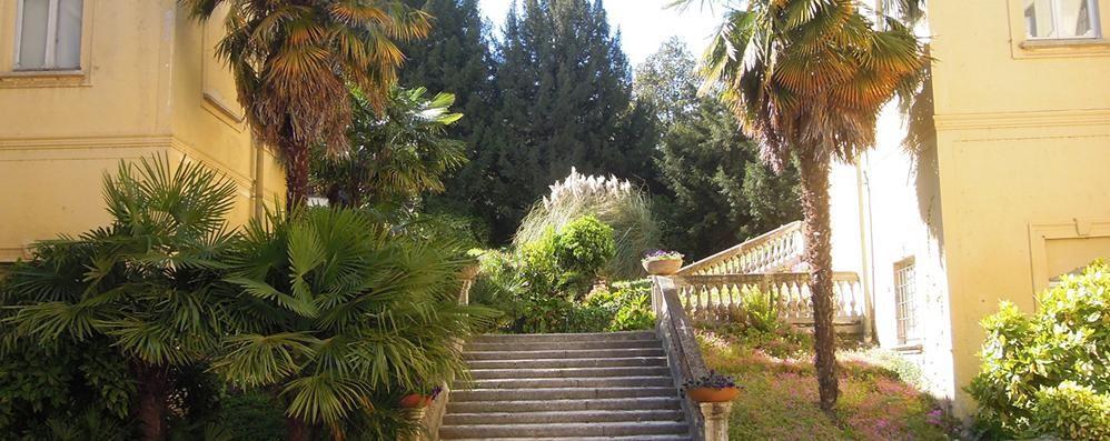 I misteriosi massi   Nel parco Ceriani a Erba