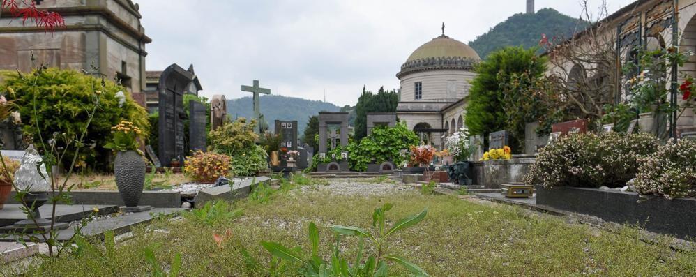 Monumentale trascurato  Vialetti invasi dalle erbacce