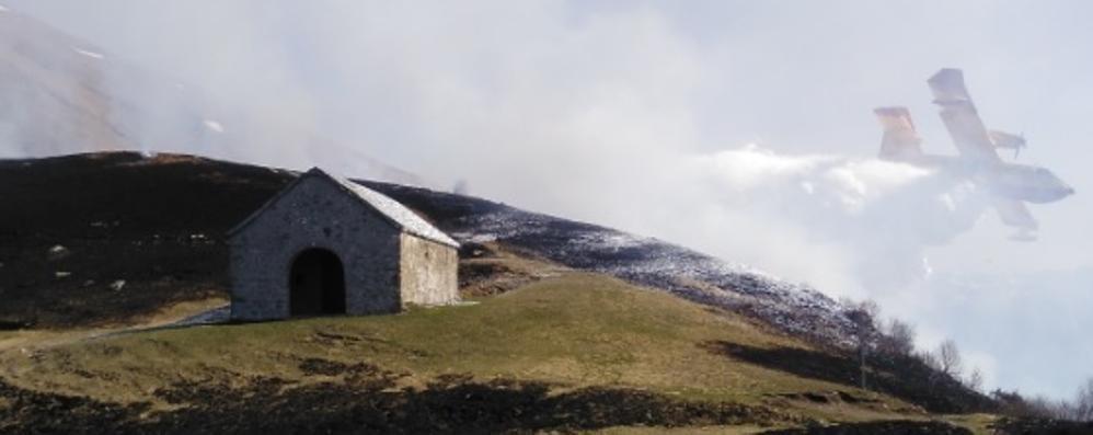 In tre mesi  a Gravedona  distrutti 600 ettari di bosco