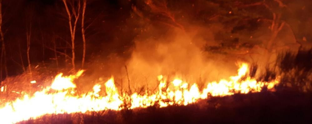 Monti devastati da due incendi  I pompieri: «Sono stati i piromani»