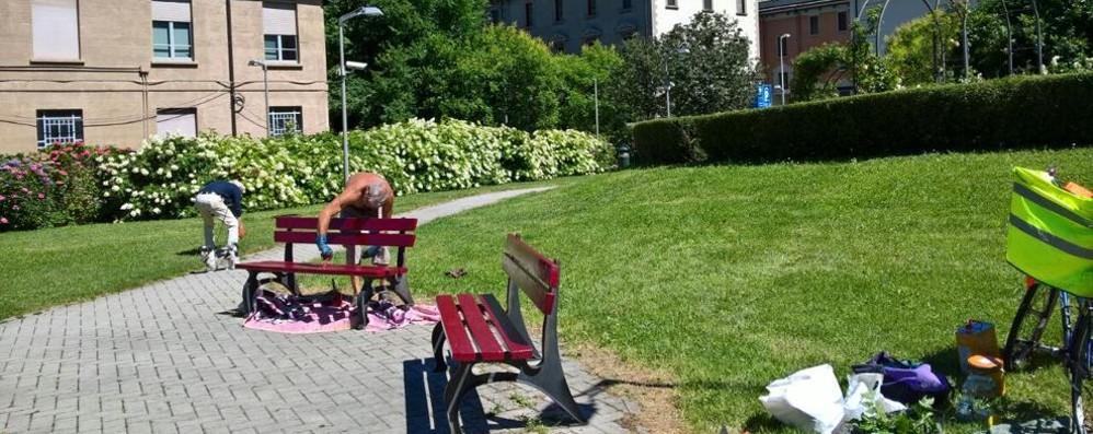 Parco delle rose rimesso a nuovo Grazie ai volontari