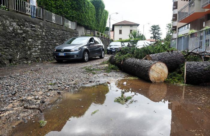 Como pianta caduta a Monte Olimpino in via Cardina che ha tirato giù i cavi della corrente, maltempo