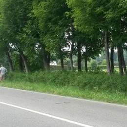 Donna in bici investita a Oltrona  È morta subito dopo il ricovero