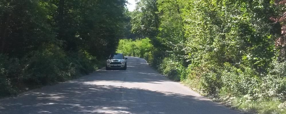 Migliaia di auto attraverso i boschi  Ecco la tangenzialina di Olgiate
