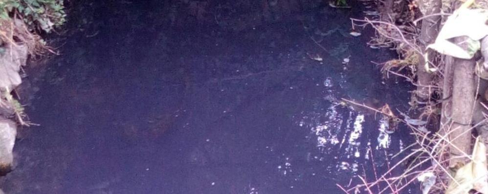 Fino, allarme inquinamento  Il Seveso  è diventato blu