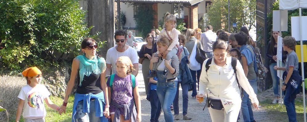 Festa delle api e Villa Amalia  Scoperta per tremila a Erba