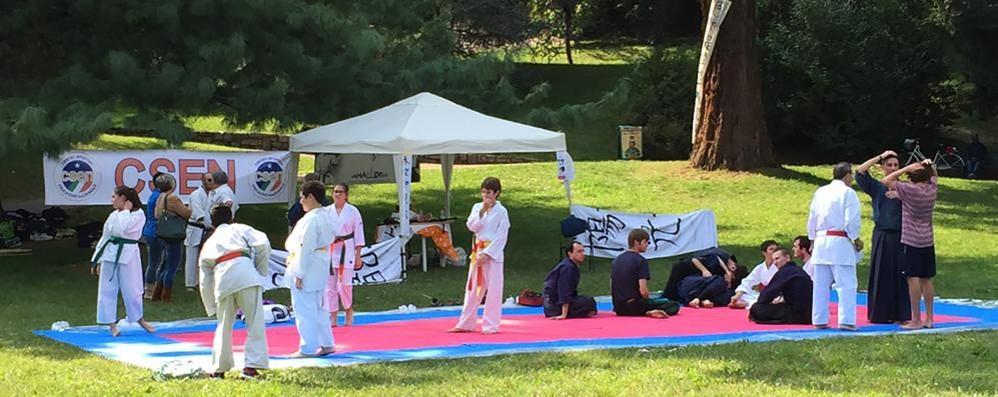 «Un chiosco e più eventi per tutti»  Ricetta per Parco Majnoni a Erba