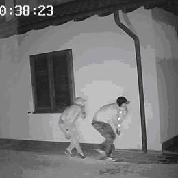 Mozzate, i ladri assaltano la villetta  Ma la telecamera li incastra