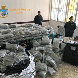 Maxi sequestro di droga: 400 chili    Il pagamento? In bitcoin