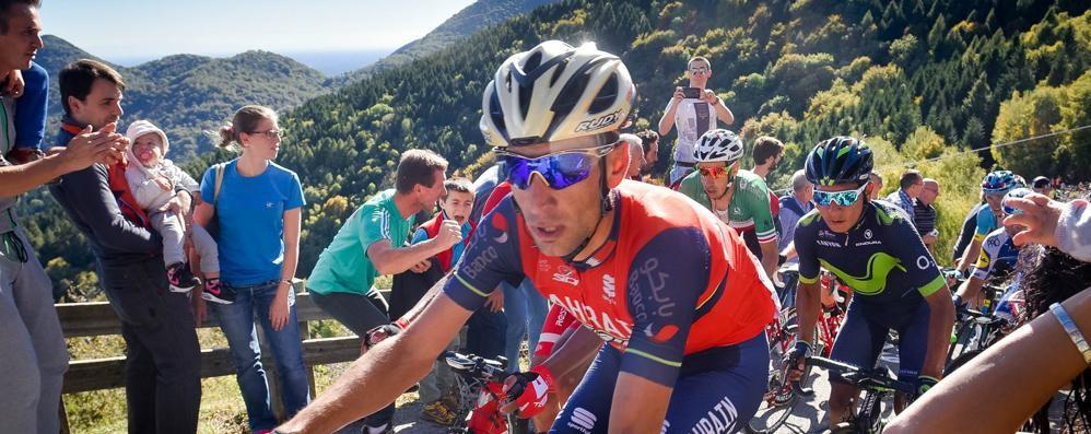 Nibali a Cantù l'8 febbraio  «I miei successi sul lago»