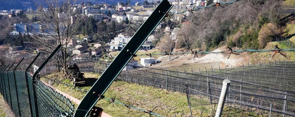 Maslianico e le multe  «Ecco come riusciamo  a far pagare gli svizzeri»
