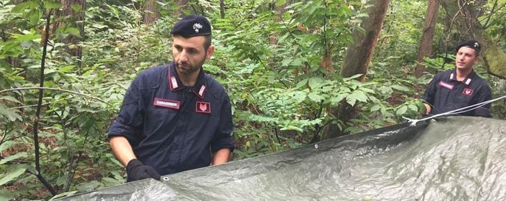 Mozzate, spaccio nei boschi  Quattro arresti dei carabinieri