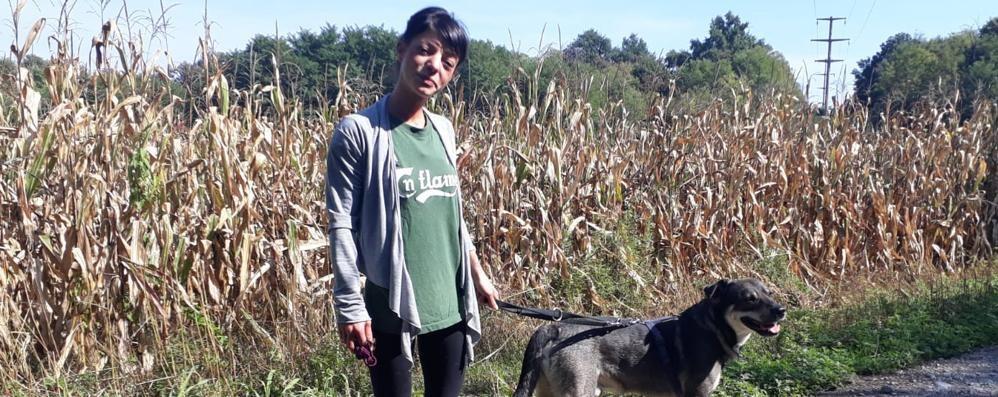 «Io, a due metri dal puma  Mi hanno salvata i cani»