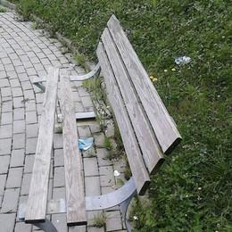 Olgiate, vandali al parco  Distrutte due panchine
