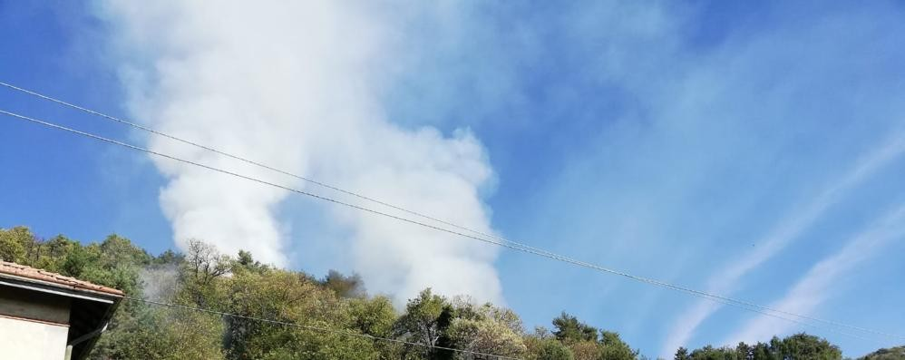 Incendio nei boschi  sopra a Cavallasca   GUARDA IL VIDEO
