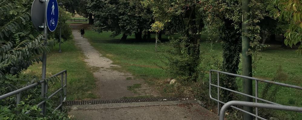 Allarme per i bocconi al topicida  Due cani avvelenati a Cavallasca