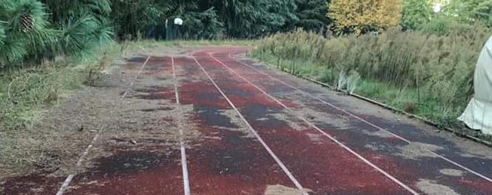 Casnate, il degrado  del centro sportivo  Tra incuria e vandali