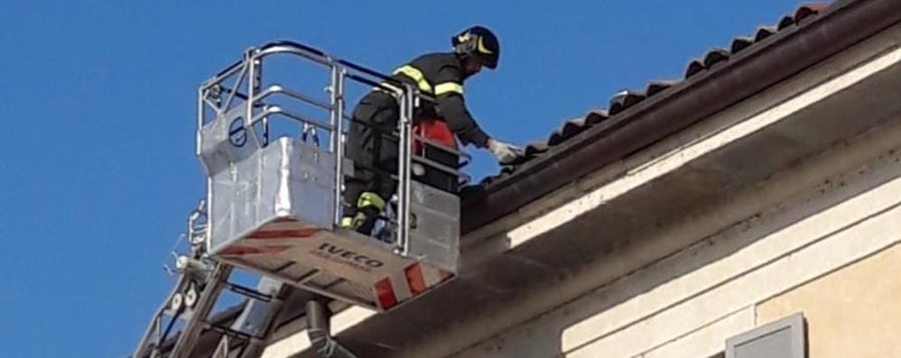 Tegole pericolanti al teatro Intervengono i pompieri