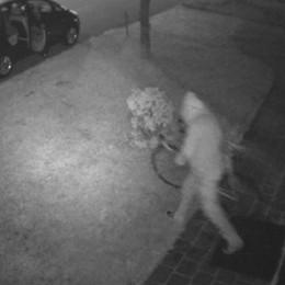Olgiate, ladro di biciclette  ripreso dalle telecamere