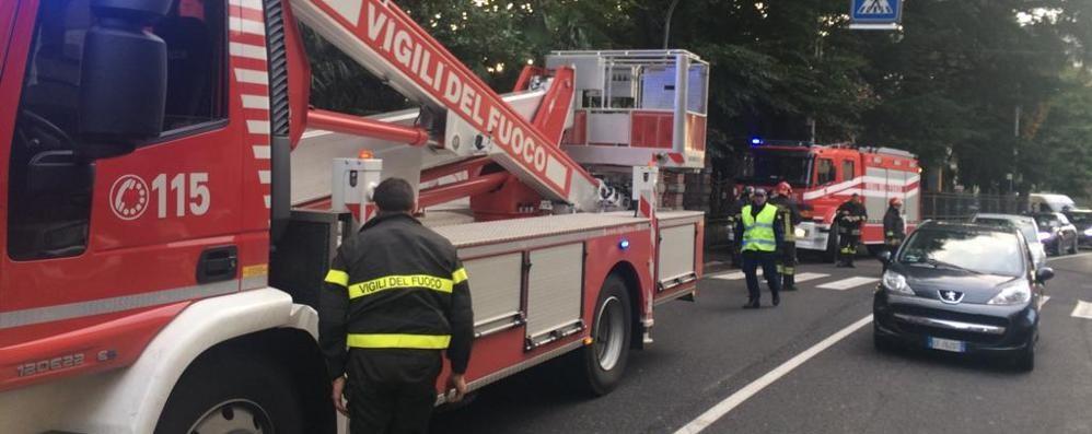 Rami pericolanti sulla fermata  Olgiate, intervengono i pompieri