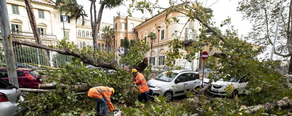 Maltempo: Ue in contatto con Roma, 'pronti ad aiutare'