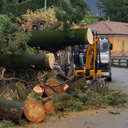 Allagamenti e piante cadute nel Comasco Questa notte 120 interventi dei pompieri