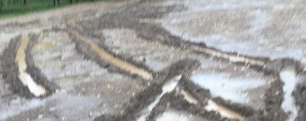 Con l'auto danneggia il parco comunale  Scoperto a Cabiate con le telecamere