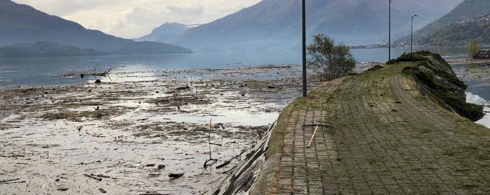 Tonnellate di detriti nel lago  «Ma a pagare siamo sempre noi»