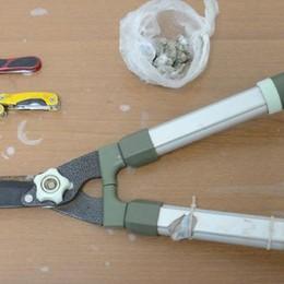 Coltelli e droga in via Bellinzona  Denunciati due giovanissimi
